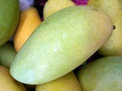 king-mango-214269__180