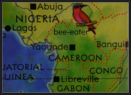 cameroon map with crop
