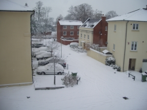 The view from our kitchen window