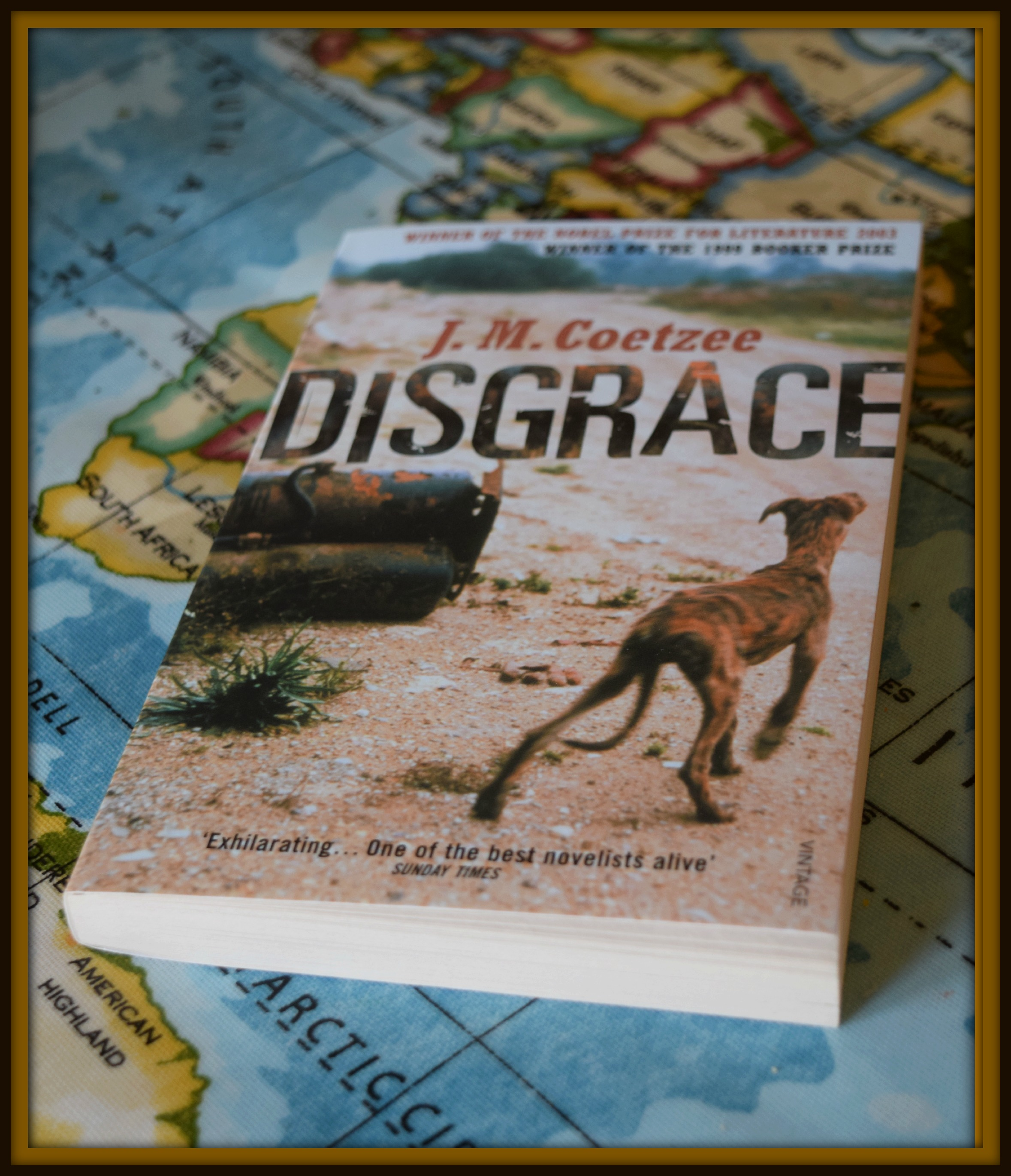 disgrace a review for the african reading challenge disgrace 2