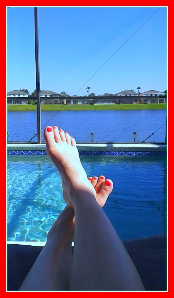 Florida for Florida pool show 2015
