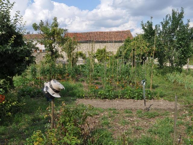 vegetable garden france