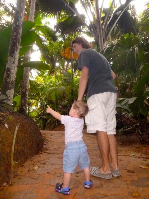 walk in seychelles