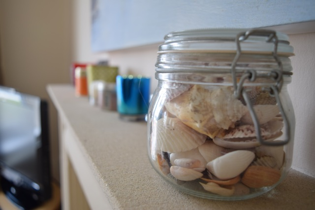 shells on shelf